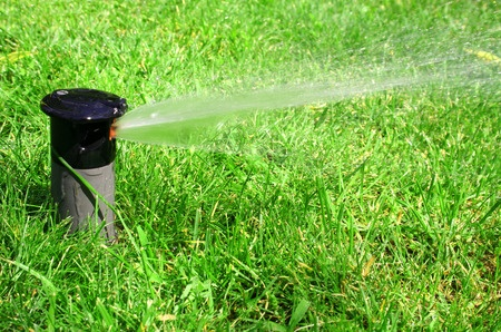 A working irrigation system