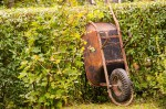 A well used wheelbarrow