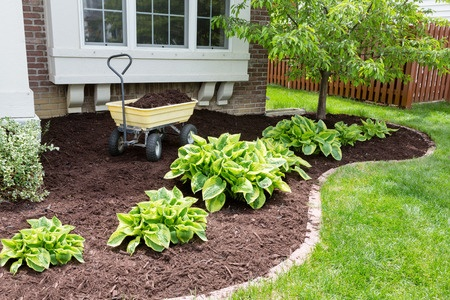 Bed with mulch added after soil has been cultivated