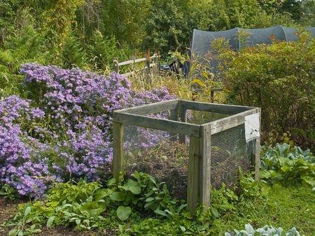 Preparing Soil for a Vegetable Garden