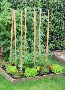 Preparing Soil for a Vegetable Garden